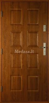 Lauko durys P8NL