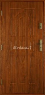 Lauko durys P9NL