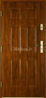 Lauko durys T6NL