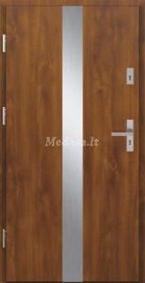 Lauko durys TAE2