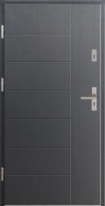 T0NT model door